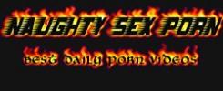 Naughtysexporn logo